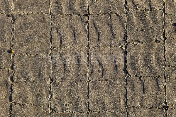 Sunny Gray Tiles Background Stock photo © eldadcarin