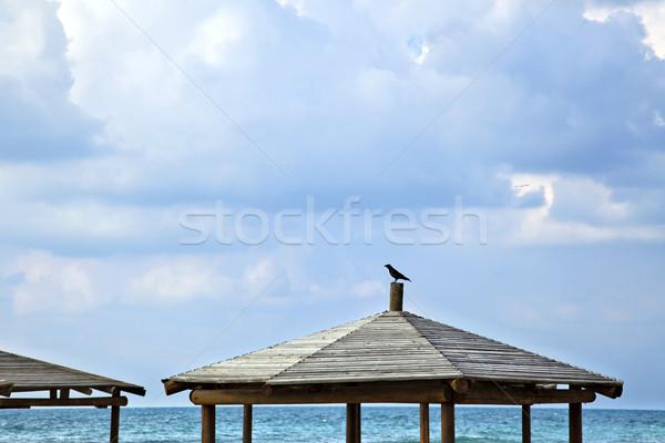 ворон пляж Top драматический облачный Сток-фото © eldadcarin