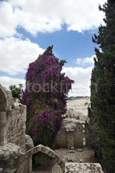 Old Jerusalem Ruins Stock photo © eldadcarin