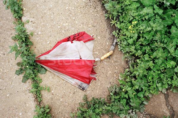 捨てられた 壊れた 傘 冬 赤 白 ストックフォト © eldadcarin