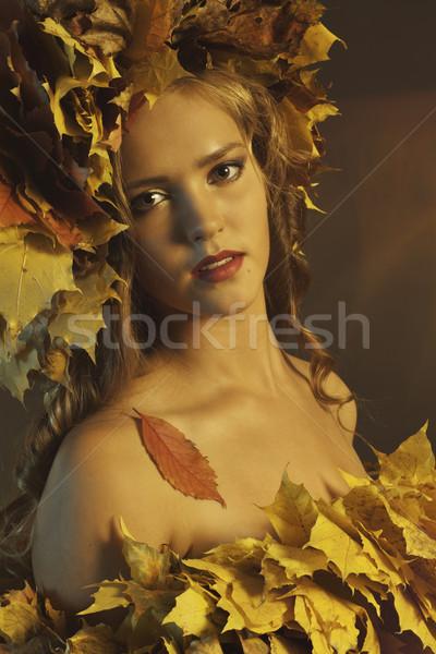 Giallo foglie bella testa oro Foto d'archivio © Elegies