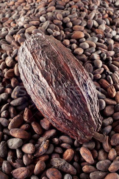 Bean fagioli colore Foto d'archivio © Elegies