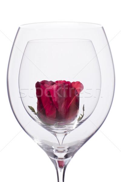 Rose Red vetro vuota vino rosso fiore Foto d'archivio © Elegies