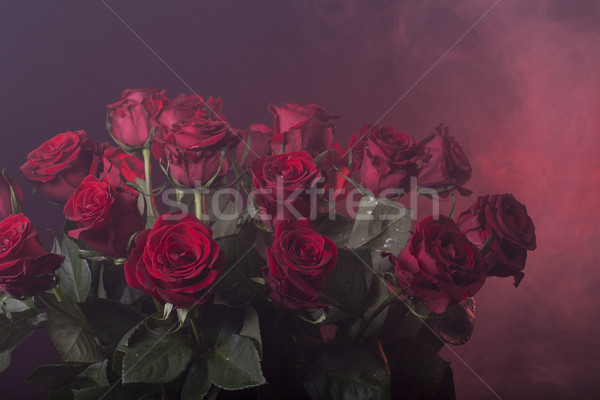 red roses on a red smoky background Stock photo © Elegies