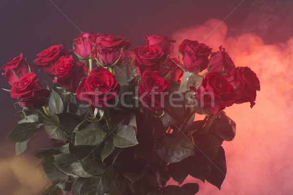 red roses on a neon red smoky background Stock photo © Elegies