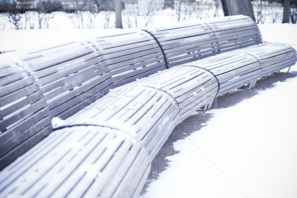 benches standing in park and covered with snow Stock photo © Elegies