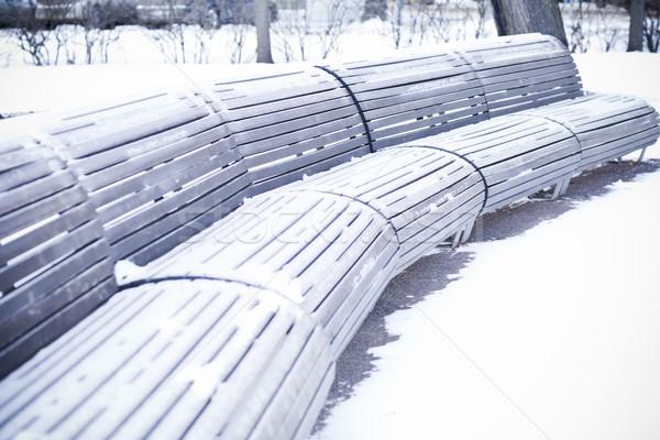 Piedi parco coperto neve Foto d'archivio © Elegies