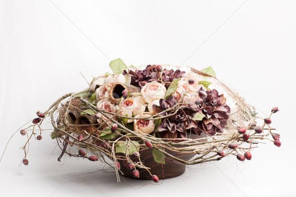 çiçek güller dalya renk Stok fotoğraf © Elegies