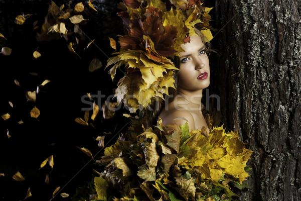 Genç kadın sarı yaprakları ağaç güzel kafa Stok fotoğraf © Elegies