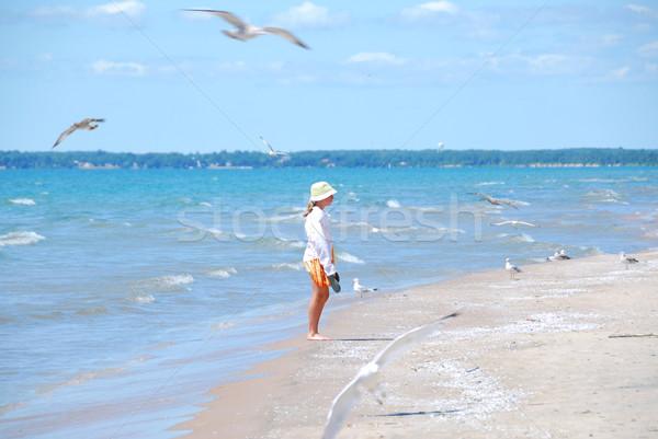 少女 ビーチ カモメ 若い女の子 飛行 子供 ストックフォト © elenaphoto