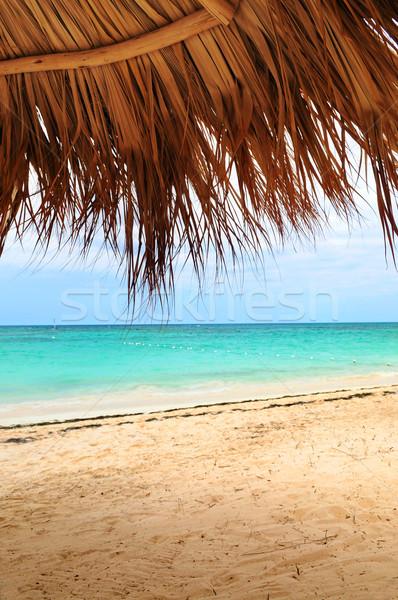 Tropikalnej plaży widoku liści palmowych schronisko Karaibów wyspa Zdjęcia stock © elenaphoto