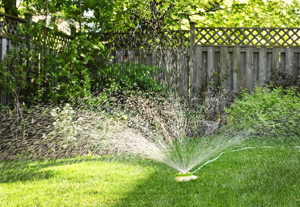 Lawn sprinkler watering grass Stock photo © elenaphoto