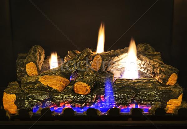 Gas fireplace Stock photo © elenaphoto