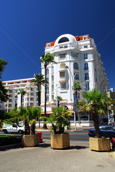 Croisette promenade in Cannes, France Stock photo © elenaphoto