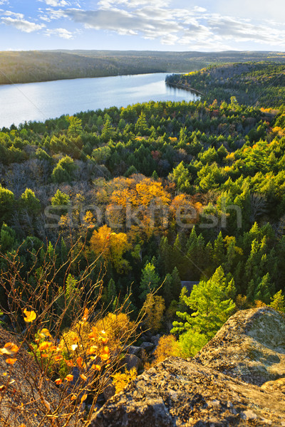 Fall forest and lake top view Stock photo © elenaphoto