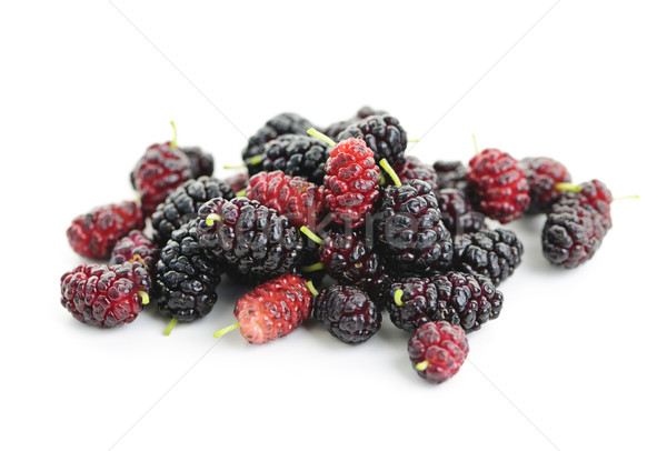 Fresh mulberries Stock photo © elenaphoto