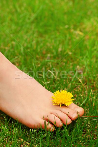 Blootsvoets jonge meisjes voet Stockfoto © elenaphoto