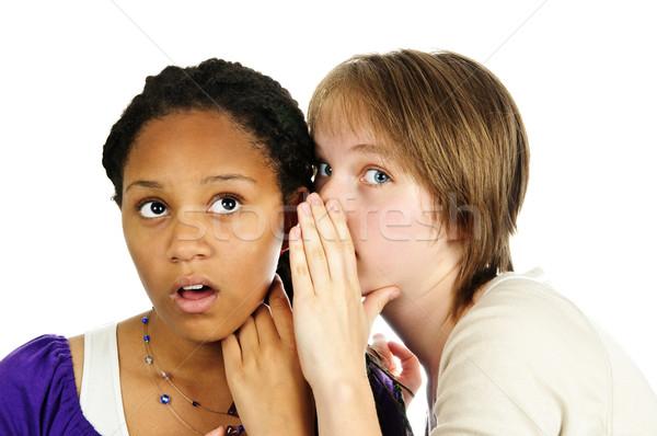 Two girlfriends gossiping Stock photo © elenaphoto