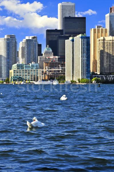 Торонто белый город зданий городского Сток-фото © elenaphoto