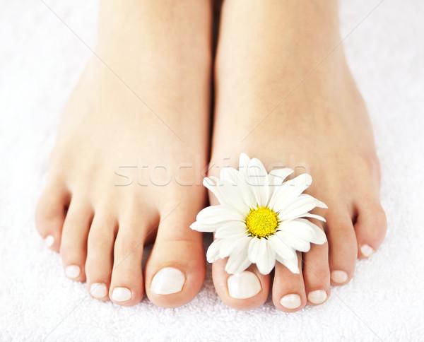 женщины ног педикюр мягкой цветы Сток-фото © elenaphoto