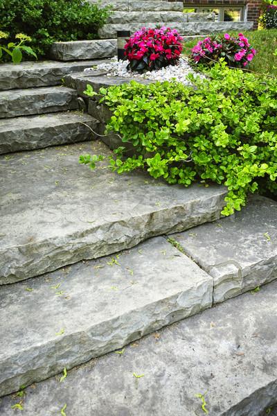 каменные лестницы озеленение природного домой саду Сток-фото © elenaphoto