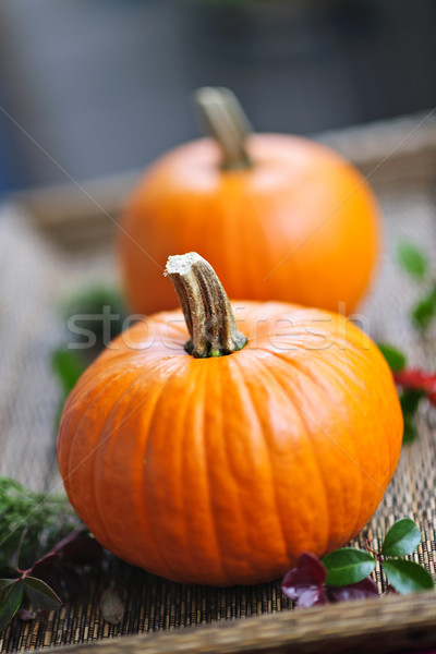 Pumpkins Stock photo © elenaphoto