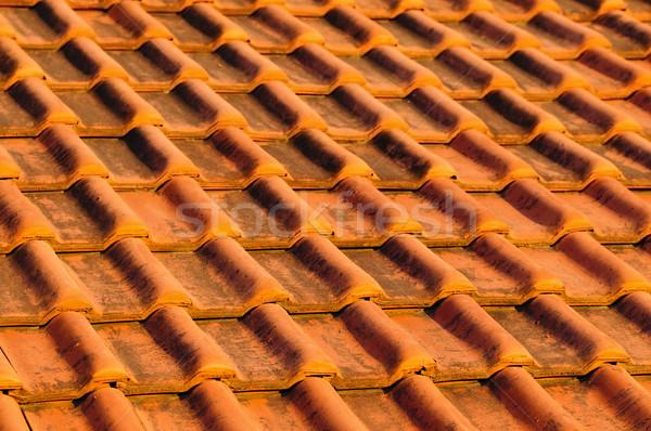 Dachu płytek czerwony glina domu Zdjęcia stock © elenaphoto