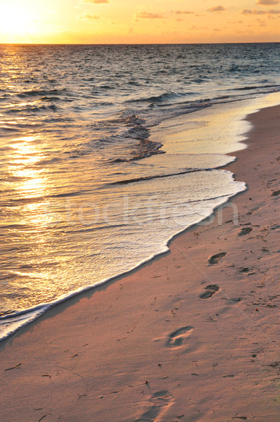 Stok fotoğraf: Ayak · izleri · gündoğumu · kumlu · tropikal · plaj · gün · batımı