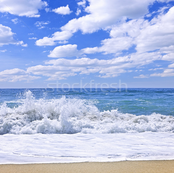 Ocean surf Stock photo © elenaphoto