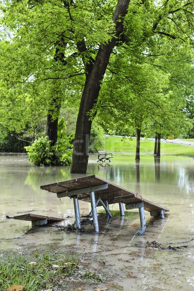 Flood in park Stock photo © elenaphoto