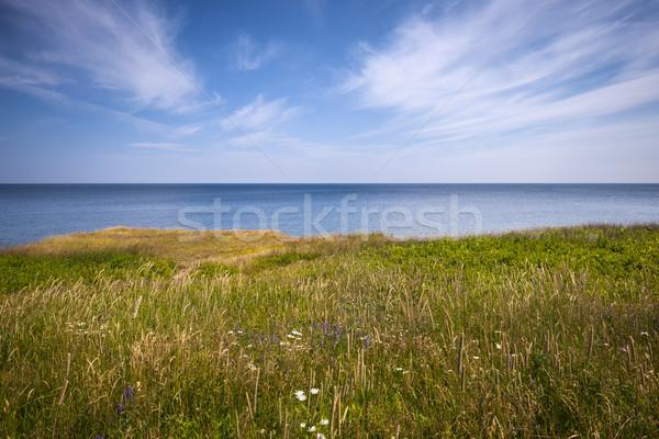 утес край океана мнение Остров Принца Эдуарда Канада Сток-фото © elenaphoto