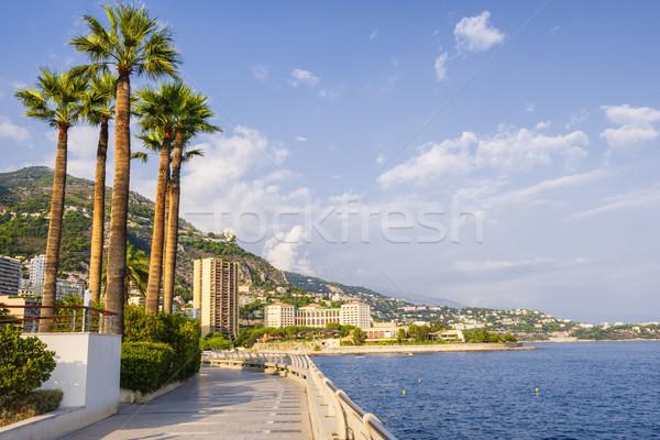 Passeio público Mônaco ver beira-mar mediterrânico costa Foto stock © elenaphoto