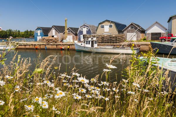 Vista isla del príncipe eduardo Canadá barcos pesca Foto stock © elenaphoto