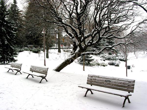 Winter benches Stock photo © elenaphoto