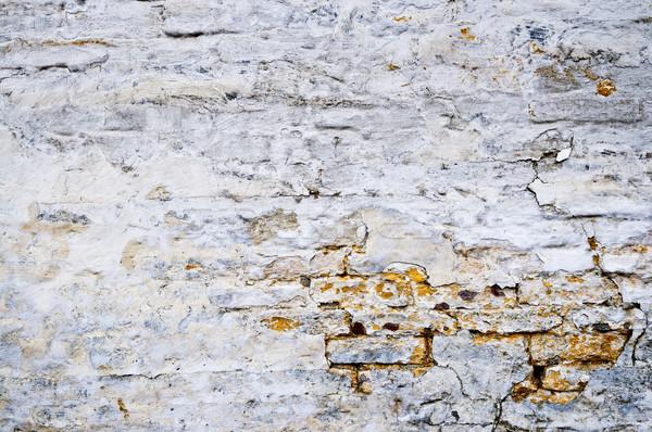 Grunge parede velho resistiu pintado textura Foto stock © elenaphoto