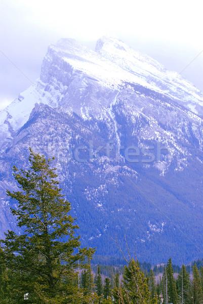 горные пейзаж высокий гор небе лес Сток-фото © elenaphoto
