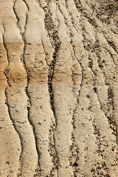 Eroded soil Stock photo © elenaphoto