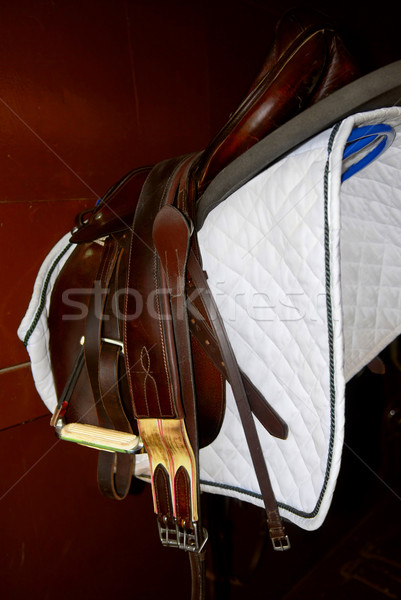 Eyer raf oda binicilik Stok fotoğraf © elenaphoto