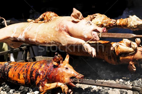 Varkens spugen gekookt hot brand Stockfoto © elenaphoto