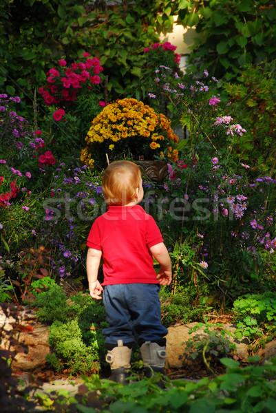 Toddler garden Stock photo © elenaphoto