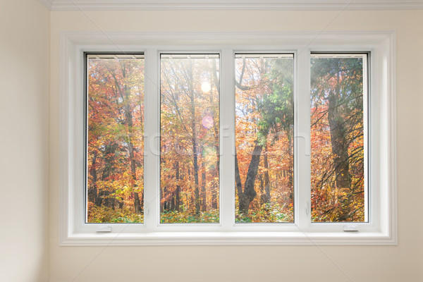 Window with view of autumn forest Stock photo © elenaphoto