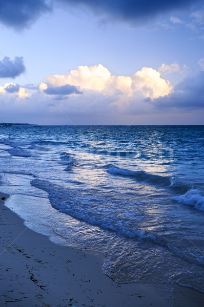 Ocean waves on beach at dusk Stock photo © elenaphoto