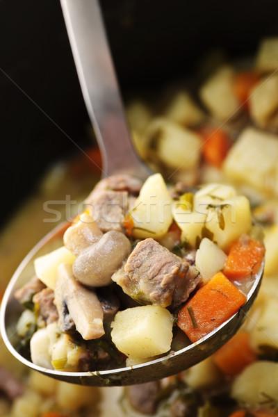 Gulasz wołowy łyżka wołowiny ziemniaki gulasz Zdjęcia stock © elenaphoto