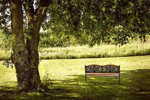 Park bench under tree Stock photo © elenaphoto