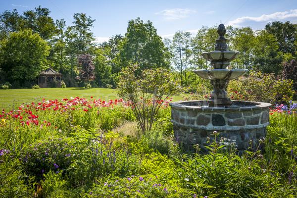 Garden with fountain Stock photo © elenaphoto