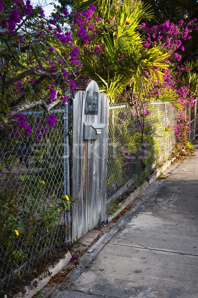 Key West street Stock photo © elenaphoto