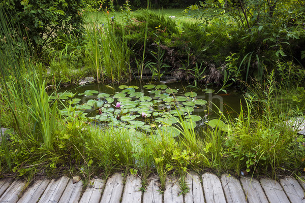 Small landscaping pond Stock photo © elenaphoto