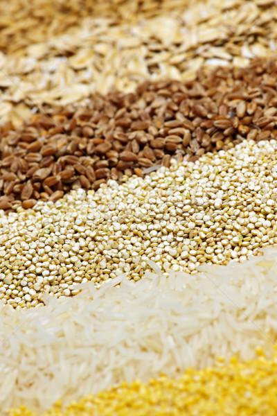 Various grains close up Stock photo © elenaphoto