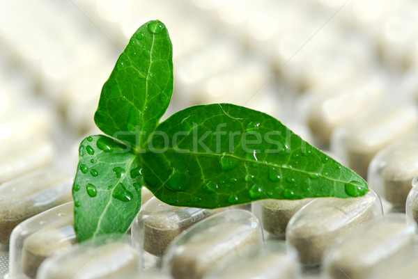 Herbal supplement Stock photo © elenaphoto