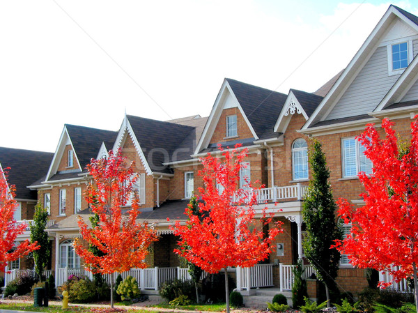 New Townhomes Stock photo © elenaphoto
